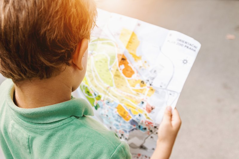 child studying map